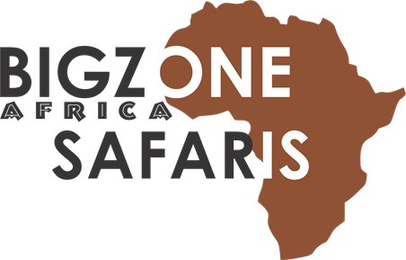 Bigzone Tours & Safaris