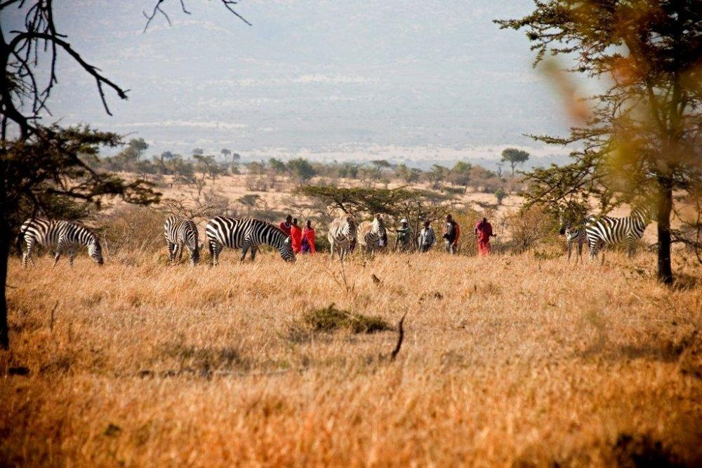 8 Days Kenya Discovery Safari – Mombasa